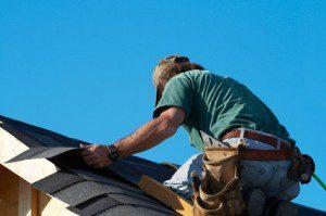 Roof Repair 55362